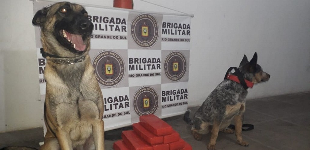 BRIGADA MILITAR PRENDE HOMEM COM 10 KG DE MACONHA NA BR 392